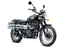 Photo of a 2011 Triumph Scrambler