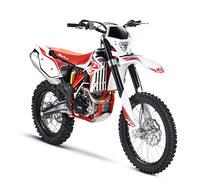 2013 Beta RR 450