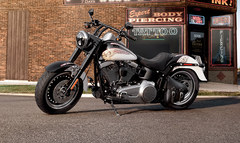 Photo of a 2013 Harley-Davidson FLSTFB Fat Boy Lo