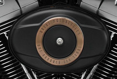 2013 Harley-Davidson FLSTFB Softail Fat Boy Lo 110th Anniversary