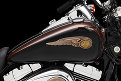 Photo of a 2013 Harley-Davidson FXDC Dyna Super Glide Custom 110th Anniversary