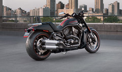 Photo of a 2013 Harley-Davidson VRSCDX Night Rod Special