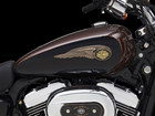2013 Harley-Davidson XL1200 Custom 110th Anniversary