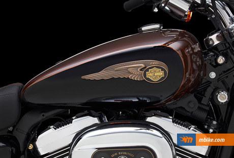 2013 Harley-Davidson XL1200 Custom 110th Anniversary