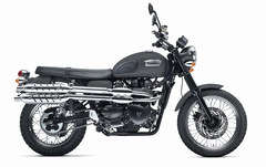 Photo of a 2013 Triumph Scrambler